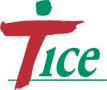 logo TICE.jpg