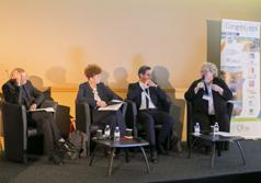 Normes européennes et législations nationales, quel droit à l'expérimentation dans les Outre-mer ?