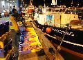 À Lorient, le port a la pêche