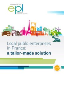 Local public enterprises in France